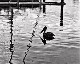 PELICAN SILHOUETTE, wall art, nature photography, bird photography, minimalist photography, pelican, harbour, inspiration wall art, nautical