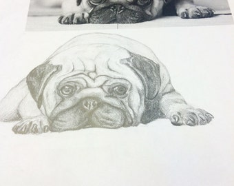 Grand Opening Special! Custom Canine Sketch!!