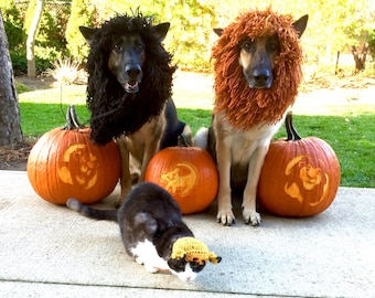 Medium/Small/Xsmall-Dog Halloween Costume