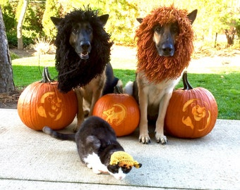 SMALL/XSMALL-Dog / Cat Halloween Costume