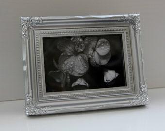 Black and white flowers: Framed photo