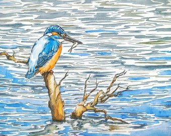 Kingfisher art watercolour painting wildlife art bird art, The Catch