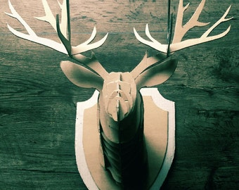 Trophy deer head