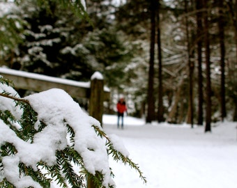 Skier, photo, 5x7, notecards, snow, gifts for her, christmas, holiday