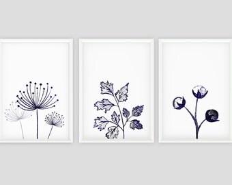 Elegant Blue Botanical Print Set, Watercolor Flowers Printable, Dandelion Wall Art,  Watercolor Herb, Part 30