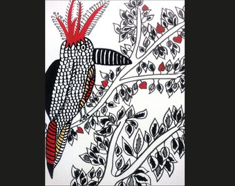 Illustration original bird