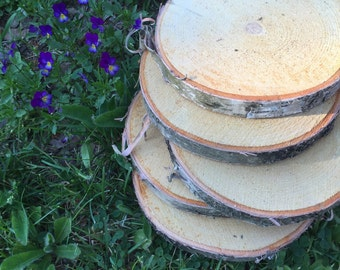 White Birch Rounds, Slices or Slabs.