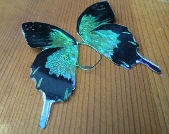 Ice blue fairy wings