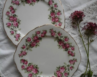 Tea plates~vintage tea plates~china plates~Crown Royal plates~set of 2 cake plates~pink rose plates~vintage china~cake plates~side plates~