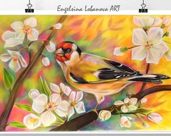 Pencils,Drawing,Realistic  colored pencil drawing techniques, bird in bright colors,goldfinch