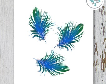 Printable Wall Art, Feathers Prints #1, Size 8x10