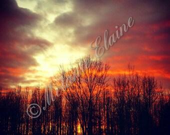 Winter Sky on Fire