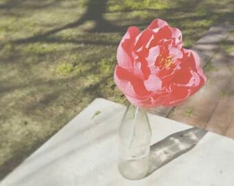 Peony | Crepe Paper Flower