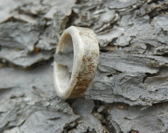 Lady's White Tail Deer Antler Ring, Size 5.5