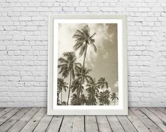 Tropical Palm Trees, Paradise, palms ,  Brazil, modern, palm tree print, palm trees posters, sepia