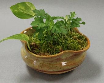 Clover Flower Pot