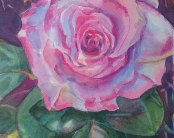 Rose (framed watercolor paintings)