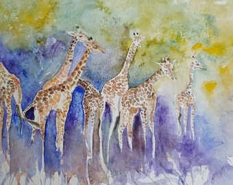 Giraffes in the wild