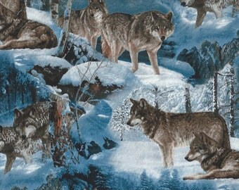 Wolves, Wild Wings, Winter Mountains