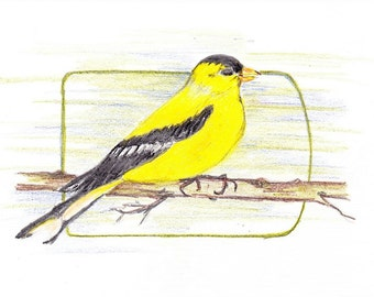 Goldfinch Blank Greeting Card