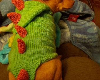 Dinosaur Dog Sweater