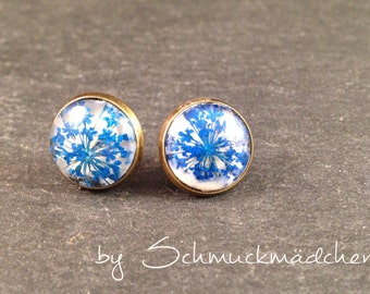 Studs bronze dill flower blue