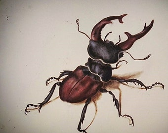 Made to Order - Bug Watercolor Painting