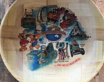 Vintage 1980s Dreamworld Bamboo Tray / Vintage Bamboo Chip Bowl / Dreamworld Bowl