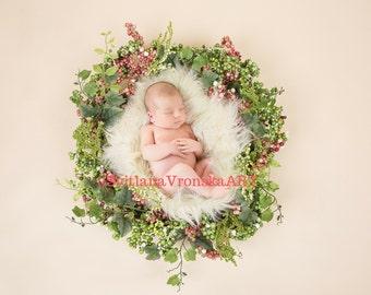 Set of 4 Digital Backdrops for Newborn Photography, digital prop, digital backdrop, digital design for photographers