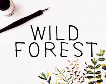 Wild Forest Calligraphy Font Download Modern Digital Typeface