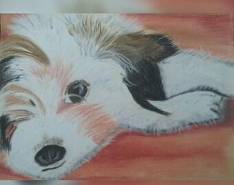The Dog Portrait (pastel picture)