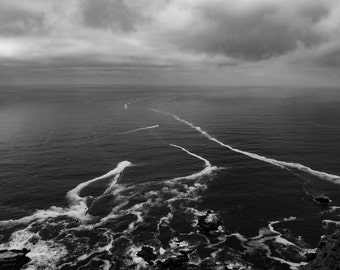 Off the coast of Point Reyes
