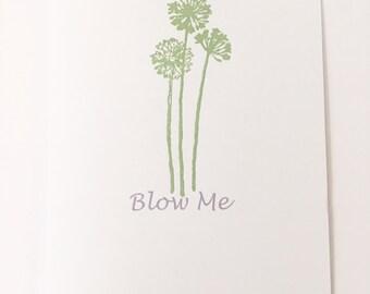 Blow Me Dandelions Greeting Cards