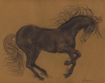 Original horse drawing 8.75X11.25  charcoal drawing, line art, hand drawn, modern drawings, horses, sketch, original technique, wall art