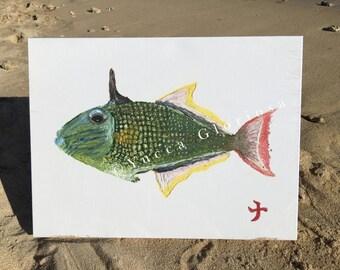 Baby Male Hawaiian Crosshatch Triggerfish Canvas print from my original art 12 inch x 16 inch
