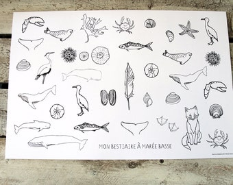 30 paper placemats BESTIARY to color