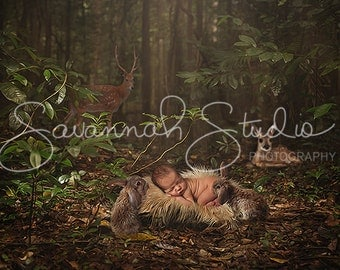 Rainforest Digital Backdrop for Newborn Photographers