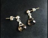 Gray Area earrings