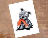 Blue Glen of Imaal Terrier Original Dog Art ACEO