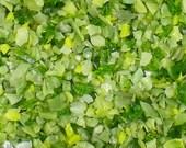 Destash Glass Frit Blend Laurel Leaf Bead Goodies COE 96 Green 1 oz Bag