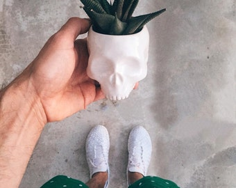 Human Skull Ceramic Planter - perfect for cactus succulent or air plant