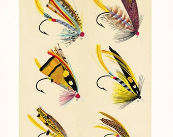 fly fishing print from the 19th century, printable digital download, collage sheet no. 959.