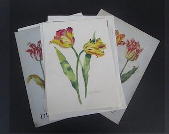 8 Piece Set of Tulip Botanical Printed Images Antique Floral Illustrations