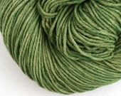 Hand Dyed Aran weight mini Empire Rambouillet Wool 213 yds 4oz Boxwood