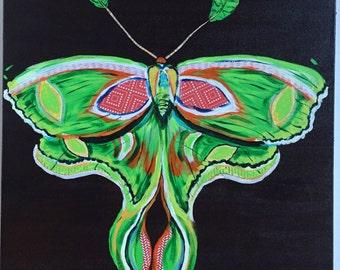 Luna Moth Original Painting Collage