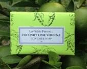 Coconut Lime Verbena goat milk soap, stocking stuffer, gift for him, gift for her, shaving soap, beach lover