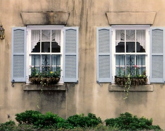Southern Exposure - Sultry Savannah Architecture - Window Box Gardens - Original Colour Film Matted Photograph by Suzanne MacCrone Rogers