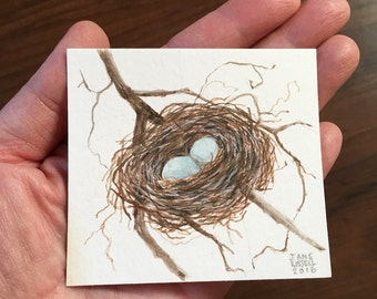 Tiny Robins Nest Watercolor Original Art OOAK