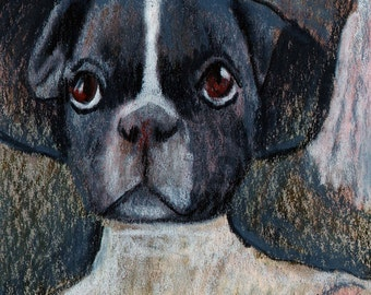 original art drawing aceo card puppy dog portrait anthropomorhic Boston terrier