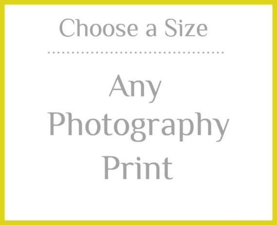 "Any Fine Art Photography Print -  Choose a size 4""x4"" to 30""x40"""